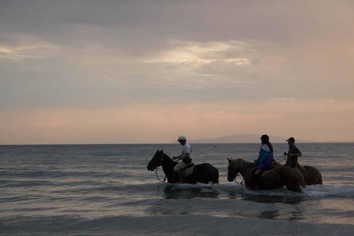 Foto_cavalli_al_tramonto
