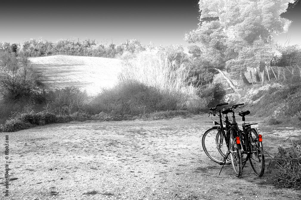 Foto_biciclette_Fonte_del_Cerro