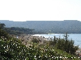 Baratti, Piombino (LI) - Vegetazione tra la pineta e la spiaggia