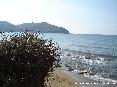 Baratti, Piombino (LI) - Le secche lungo il golfo sono il rifugio di molte specie marine, animali, pesci e piante.