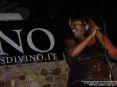 Blues Divino 2009 - Camigliano, Montalcino (SI) - Foto 4 Associazione Culturale Ricreativa Camigliano, foto di Patrizio Martini, 25 luglio e 1 agosto 2009