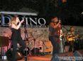 Blues Divino 2009 - Camigliano, Montalcino (SI) - Foto 6 Associazione Culturale Ricreativa Camigliano, foto di Patrizio Martini, 25 luglio e 1 agosto 2009