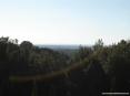 Bolgheri (LI) - Panorama verso il mare e le verdi pinete marittime