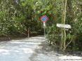 Cala Violina (GR) - Un sentiero per Cala Violina inizia in località Portiglioni vicino al porto del Puntone di Scarlino, accanto a Follonica