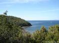 Cala Violina (GR) - Affaccaindosi fra il verde della macchia mediterranea si scoprono incredibili scorci a picco sul mare
