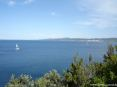 Cala Violina (GR) - Guardando oltre il verde della vegetazione verso nord ha una splendida vista panoramica della città di Follonica