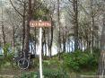 Cala Violina (GR) - A circa metà strada fra Portiglioni di Scarlino e Cala Violina ci imbattiamo nel sentiero che scende fino alla meravigliosa Cala Martina