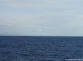 Canale di Piombino (LI) - Foto del mare del canale di Piombino. Guardando con attenzione si scorge la sagoma della Corsica