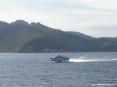 Canale di Piombino (LI) - Un aliscafo in navigazione verso Piombino. Sopra la costa dell