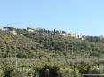 Castagneto Carducci (LI) - Il borgo spunta tra la verde macchia mediterranea tipica della Toscana marittima