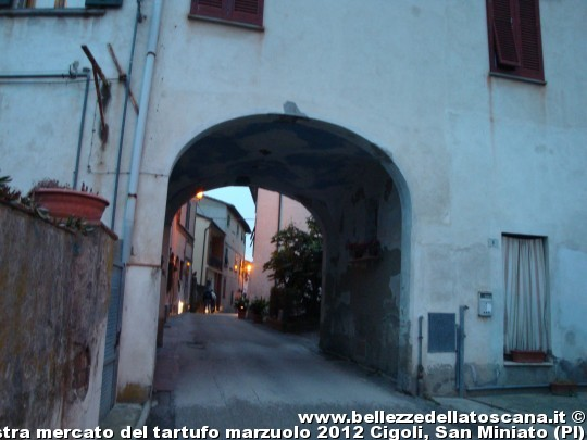 Fotografia della xiv mostra mercato del tartufo marzuolo 2012 cigoli san miniato pi 2 - Mostra della porta ...