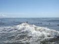 Forte dei Marmi (LU) - Alcuni surfisti fotografati dal pontile del Forte verso sud. I ragazzi stanno aspettando l