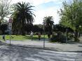 Forte dei Marmi (LU) - Nei dintorni del centro città ci sono giardini e aiuole molto belle e ben curate.