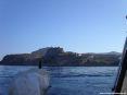 Isola di Capraia (LI) - L