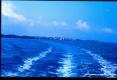 Isola di Pianosa (LI) - Allontanandosi dall