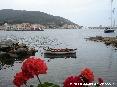 Marciana Marina (LI) - Vista del porto dalla zona del Cotone