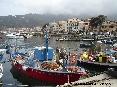 Marciana Marina (LI) - Il lungomare fornito di tanti bei negozi griffati e negozietti caratteristici fa da sfondo alle barche da pesca