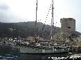 Marciana Marina (LI) - Anche nelle mezze stagioni diverse molte imbarcazioni scelgono il porto del paese