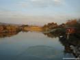 Marina di Cecina (Cecina Mare) (LI) - Sulla riva del fiume Cecina tra gli arbusti paduli sorgono diverse costruzioni con reti da  pesca