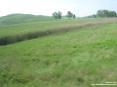 Monterchi (AR) - La strada che porta al paese è immersa nel verde della campagna.