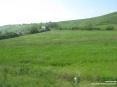 Monterchi (AR) - La strada che porta al paese serpeggia nella campagna tra colline, prati e fiori profumati.