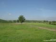 Monterchi (AR) - Il panorama sulla campagna sembra estendersi per un verde infinito tra i dolci pendii delle colline.