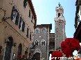 Piombino (LI) - Corso Vittorio Emanuele racchiude tutto l